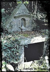 Fontaines seigneuriales. dans Fontaine à voûte- Pont-labbe-font-Treouguy