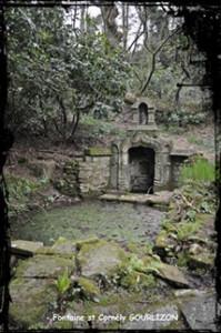 Pour les animaux. dans Fontaines sacrées et profanes- 137Gourlizon-font-St-Cornély2-199x300