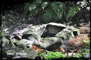 seiz-feuteun4-300x199 dans Fontaines sacrées et profanes-