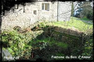 16-Coat-Amour-300x200 dans PAYS BAS TREGOR-