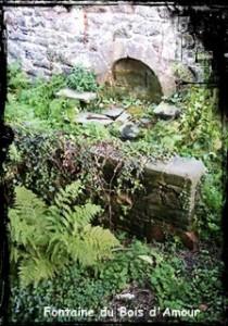 Pour faire sa cour. dans Fontaines profanes- Morlaix-Bois-damour-210x300
