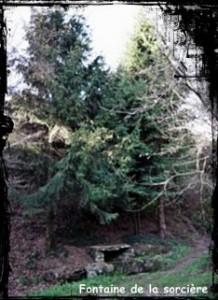 La wrac'h. dans Fontaines profanes- font-de-la-sorciere-218x300