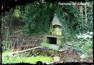 Corentin à Toul ar Groas. dans Fontaine de dévotion scrignac-st-corentin-toul-ar-groas
