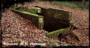 Marie et Véronique.  dans Fontaine de dévotion bannalec-ste-veronique-300x160