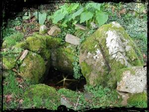 Fontaines de dévotion et domestiques. quimerchfeunteunvianlannegarmk2-300x225